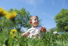 Little girls sitting in a field  dandelions. Royalty Free Stock Photos