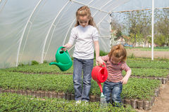 Little girls watering stock photography