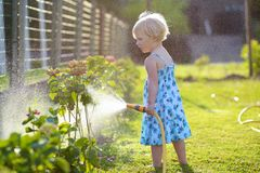 Little giving water to flowers in the garden Royalty Free Stock Photos