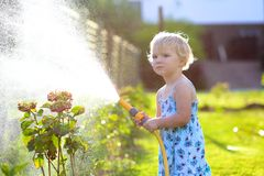 Little giving water to flowers in the garden Royalty Free Stock Images