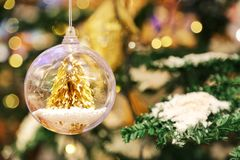 A little golden Christmas tree in the crystal clear bauble ball hangs as a decoration. With blur background of Christmas tree with some snow on its leaf Royalty Free Stock Image