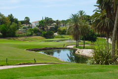 Little golf lake Stock Photos