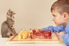 Little grandmaster with playful kitten plays chess. Royalty Free Stock Photos