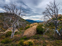 Little Granite Mountain Trail   37 Granite  Mountain Wilderness  and Recreational Area Royalty Free Stock Photo