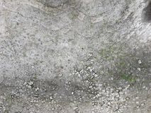 Little grass growing up on the surface of cracking concrete road stock image