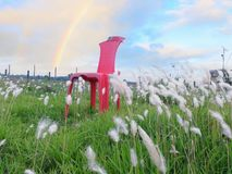 Chair playing with wind. The little grass are playing with wind and want to  be strong like chair Stock Photography