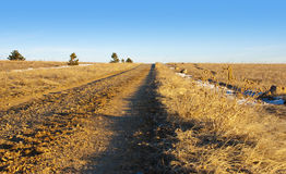 Little Gravel Road to the Horizon Royalty Free Stock Images