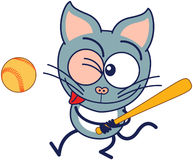 Little gray cat preparing to hit the ball with a bat when playing baseball. Cute gray cat in minimalistic style with pointy ears, bulging eyes and long tail Royalty Free Stock Images