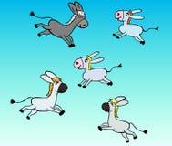 Little gray donkey children Stock Image