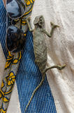 Little green chameleon climbing up shirt next to sunglasses. And colorful bag Royalty Free Stock Photography