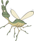 Little green mosquito Stock Image