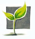 Little green plant. Seedling, freehand painting with structure visible Royalty Free Stock Photography