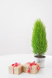 Little green tree and gifts with red ribbons Stock Photo
