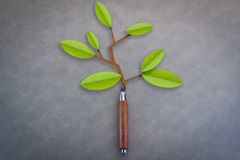 Little green tree by grew from pencil on grey background Stock Images