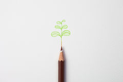Little green treen by color pencil on paper Stock Image