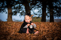 Little halloween which Royalty Free Stock Image