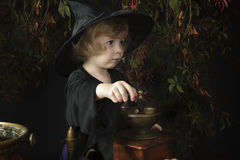 Little halloween witch Royalty Free Stock Photo