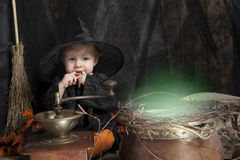 Little halloween witch. Cute little halloween witch with cauldron Stock Photo