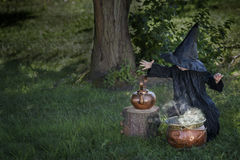 Little halloween witch outdoors with cauldron. Little halloween witch , boiling a potion, outdoors in the woods Stock Photography