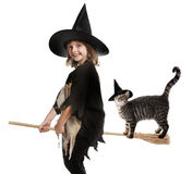 Little hallowen witch Royalty Free Stock Photos