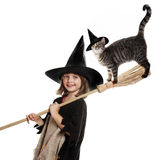 Little hallowen witch. Flying on broom  with her cat Royalty Free Stock Images
