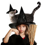 Little hallowen witch Stock Photo