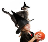 Little hallowen witch Stock Photos