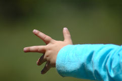 Little hand Stock Images