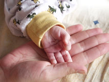 Little hand, big hand. Mother holding her baby's tiny hand, on a pillow Stock Photos