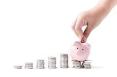 Little hand put coin to piggy bank. Isolated on white background, saving money concept Royalty Free Stock Photography