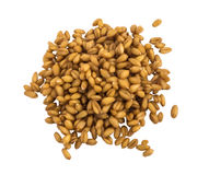 Little Handful Of Wheat Germs Isolated Royalty Free Stock Image