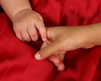 Little Hands royalty free stock photography