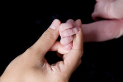 Little hands Royalty Free Stock Image