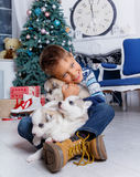 Little handsome boy sitting with Husky puppies Stock Photo