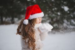 Little happy beautiful girl in winter forest stock image
