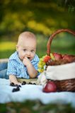 Little happy boy have a picnic Royalty Free Stock Images