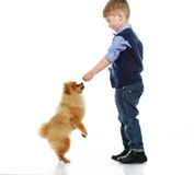 Little happy boy playing with spitz Royalty Free Stock Photos