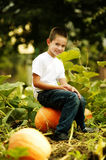 Little happy boy sits on a big orange pumpkin Royalty Free Stock Photos