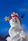 Little happy christmas snowman with cookie star outdoor. Winter season. Stock Image