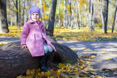 Little happy girl in autumn park on sunny day Royalty Free Stock Images
