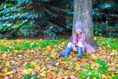 Little happy girl in autumn park on sunny fall day Stock Photos