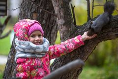 Little happy girl with hand feeding a squirrel in the Park. Little girl with hand feeding a squirrel in the Park Stock Photography