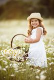 Little cute girl with basket of camomile flowers. Little happy girl having fun in a field of camomile flowers stock photos