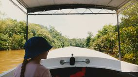 Little happy girl is in safari tour boat sailing slow along beautiful sunny jungle river with lush greenery over water. Excited female child enjoying exciting stock footage