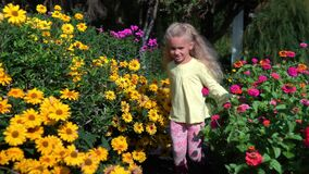 Little happy girl walking between colorful flower beds in garden. Vacation. Blond curly hair child girl in summertime park. Camera movement backward follow stock footage
