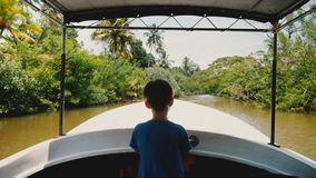 Little happy ship captain boy in safari tour boat front sailing along idyllic exotic jungle river with lush greenery. Excited curious male child on exciting stock video