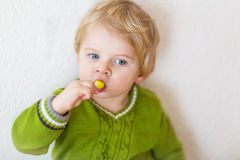 Little happy toddler boy eating lollipop Stock Image