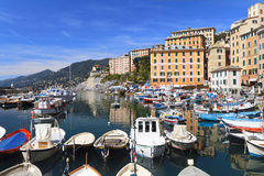 Little harbor in Camogli, Italy Stock Image