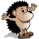 Little Hedgehog Stock Photos