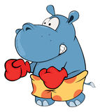 A little hippo boxer. Cartoon Royalty Free Stock Photography